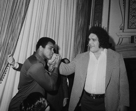 "25 Mar 1976, New York, New York, USA --- Ali Meets a Giant. New York: When World Heavyweight Boxing Champion Muahmmad Ali was in New York, March 25th, 1976 to meet Japanese wrestler Antonio Inoki, whom he will meet in a boxer versus wrestler match in Tokyo, June 26th, someone caught his eye --- it was seven-foot-four Andre, the Giant, a wrestler from France and friend of Inoki. The towering Asdre became the object of Ali's attention after he was through trading barbs with Inoki. Ali, so taken in by the man who made him look diminutive by comparison, literally bowed to Andre and then matched his hand against Andre's massive palm. All later placed ""The Giant's"" fist on his jaw -- glad he won't have to face such a blow. --- Image by © Bettmann/CORBIS"
